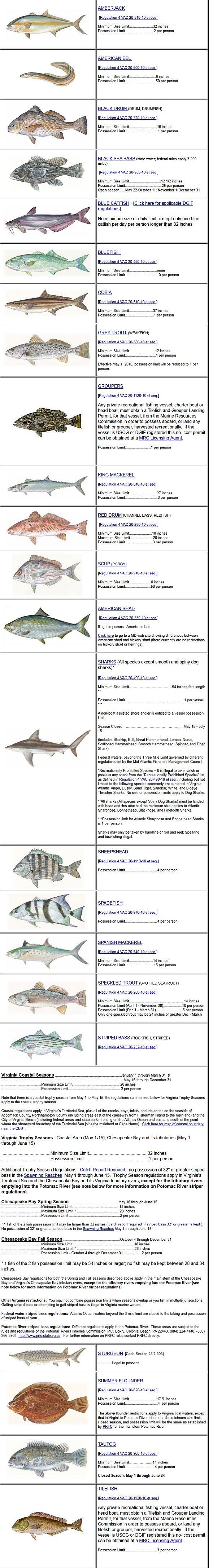 Freshwater fish nc - North Carolina