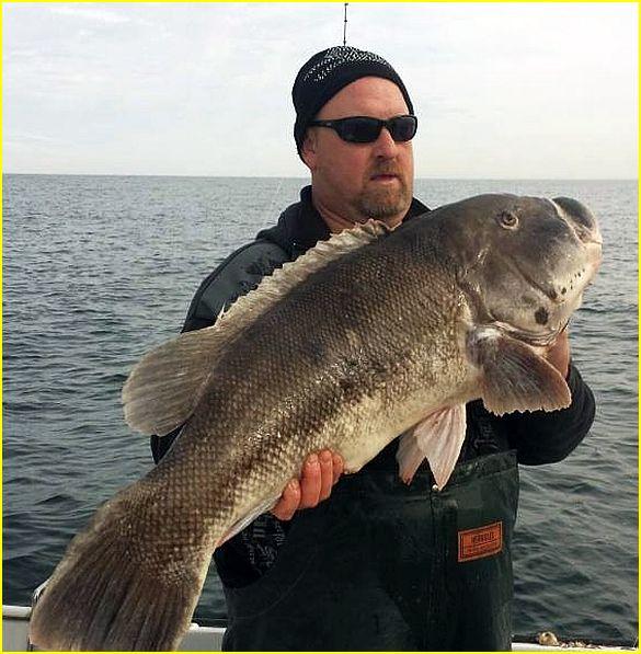 Saltwater and freshwater fishing forums fishing report for Bullards bar fishing report