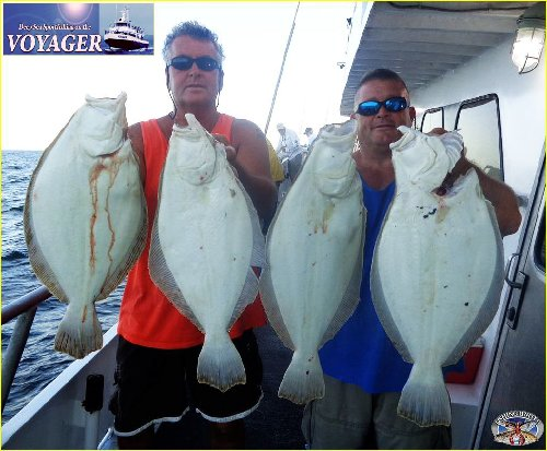 Saltwater and Freshwater Fishing Forums, Fishing Report